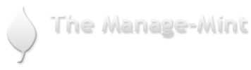 Southlake, TX Financial Firm | Home Page | The Manage-Mint